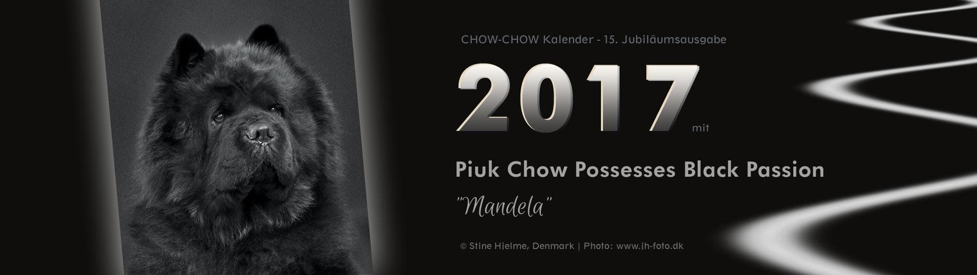 Chow-Chow Kalender 2017