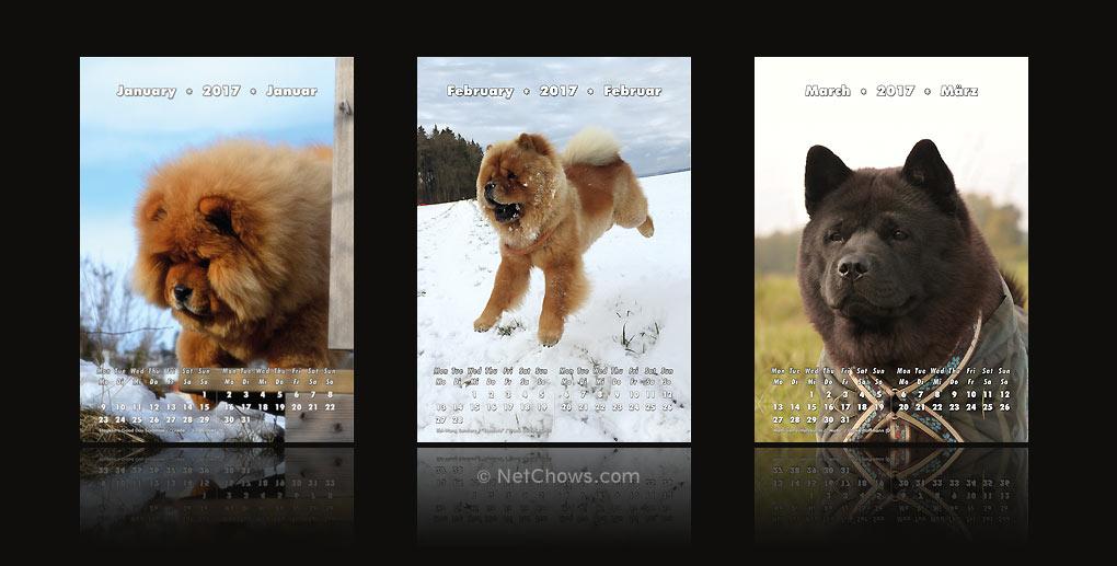 Chow-Chow Kalender 2017 / Januar bis März