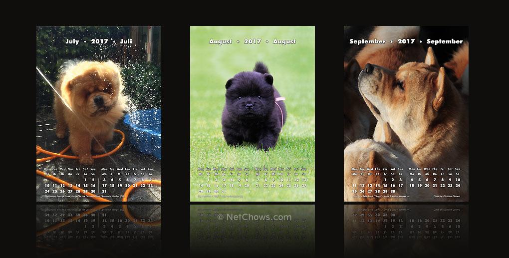 Chow-Chow Kalender 2017 / Juli bis September