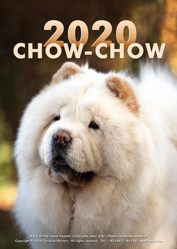Der Chow-Chow Kalender 2020