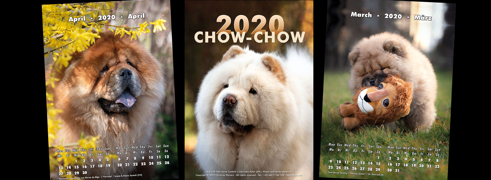 Chow-Chow Kalender 2020