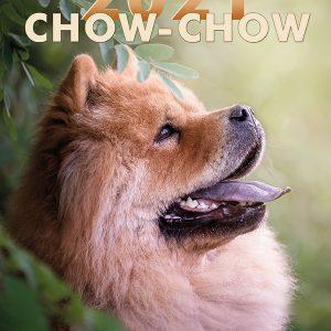 Chow-Chow Kalender 2021